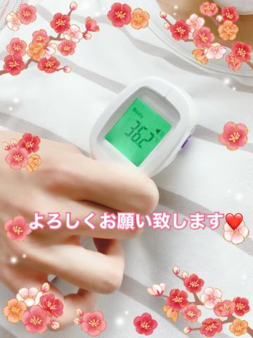 桜 こはるの写メ日記